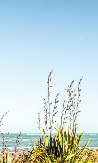 Wainamu-Beach-800x667